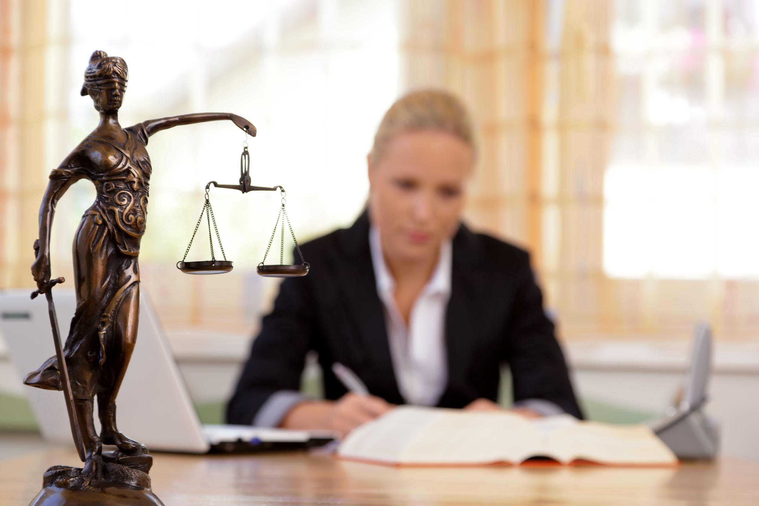 profesionalios teisininko paslaugos